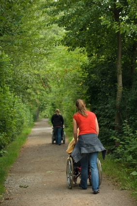 Wheelchair-access-gravel-park-path